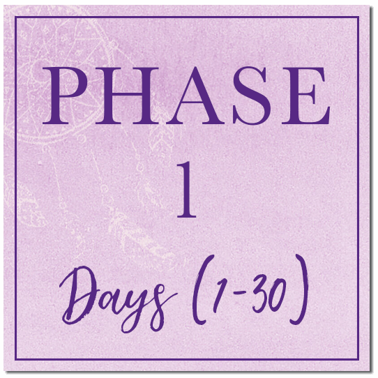 phase-1.png