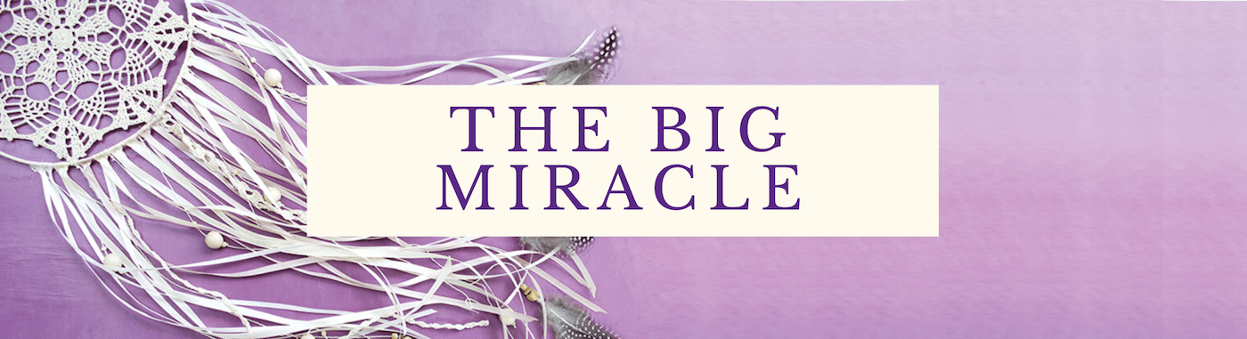 The Big Miracle.png