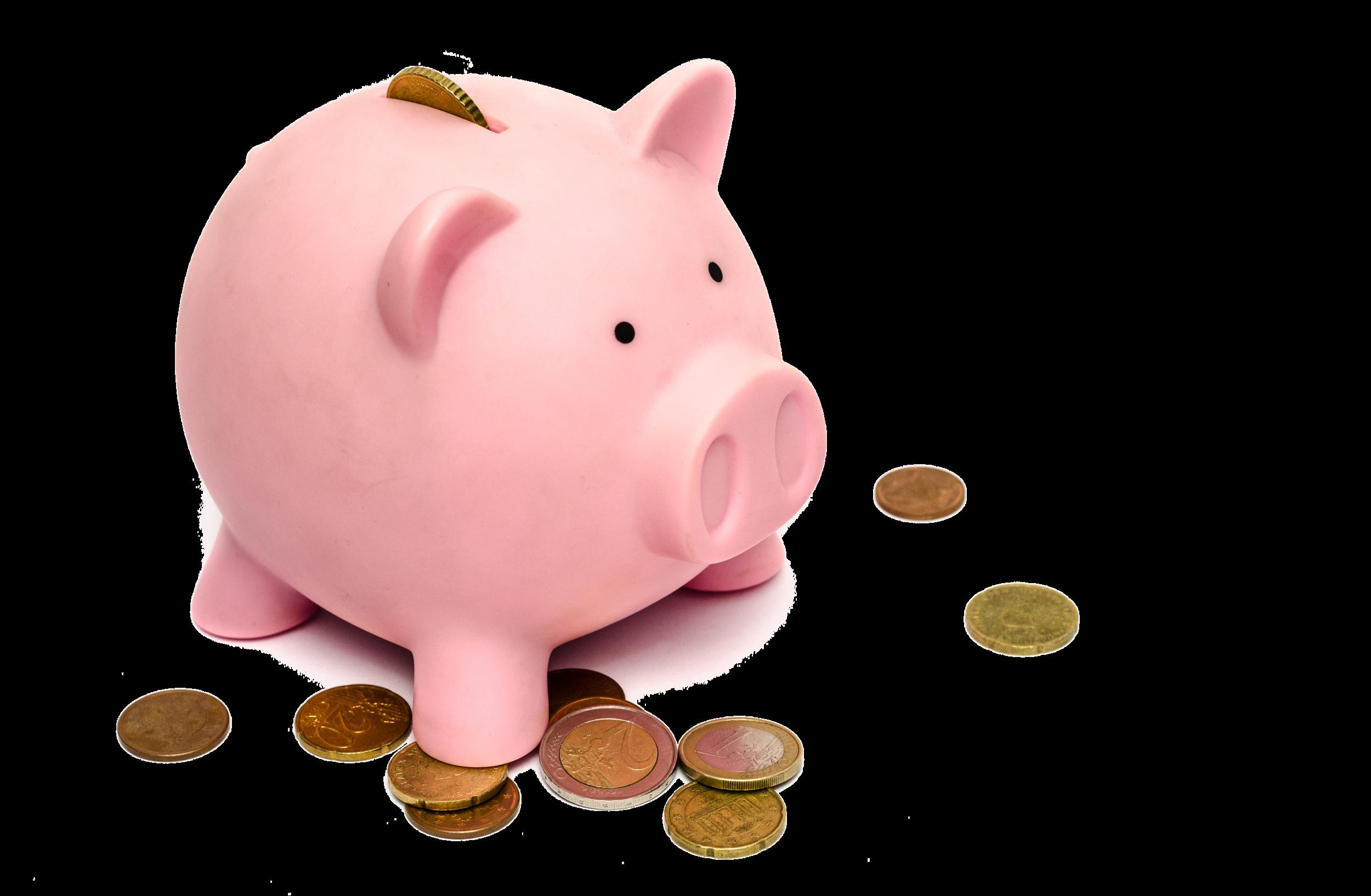 Piggy-Bank-2.png