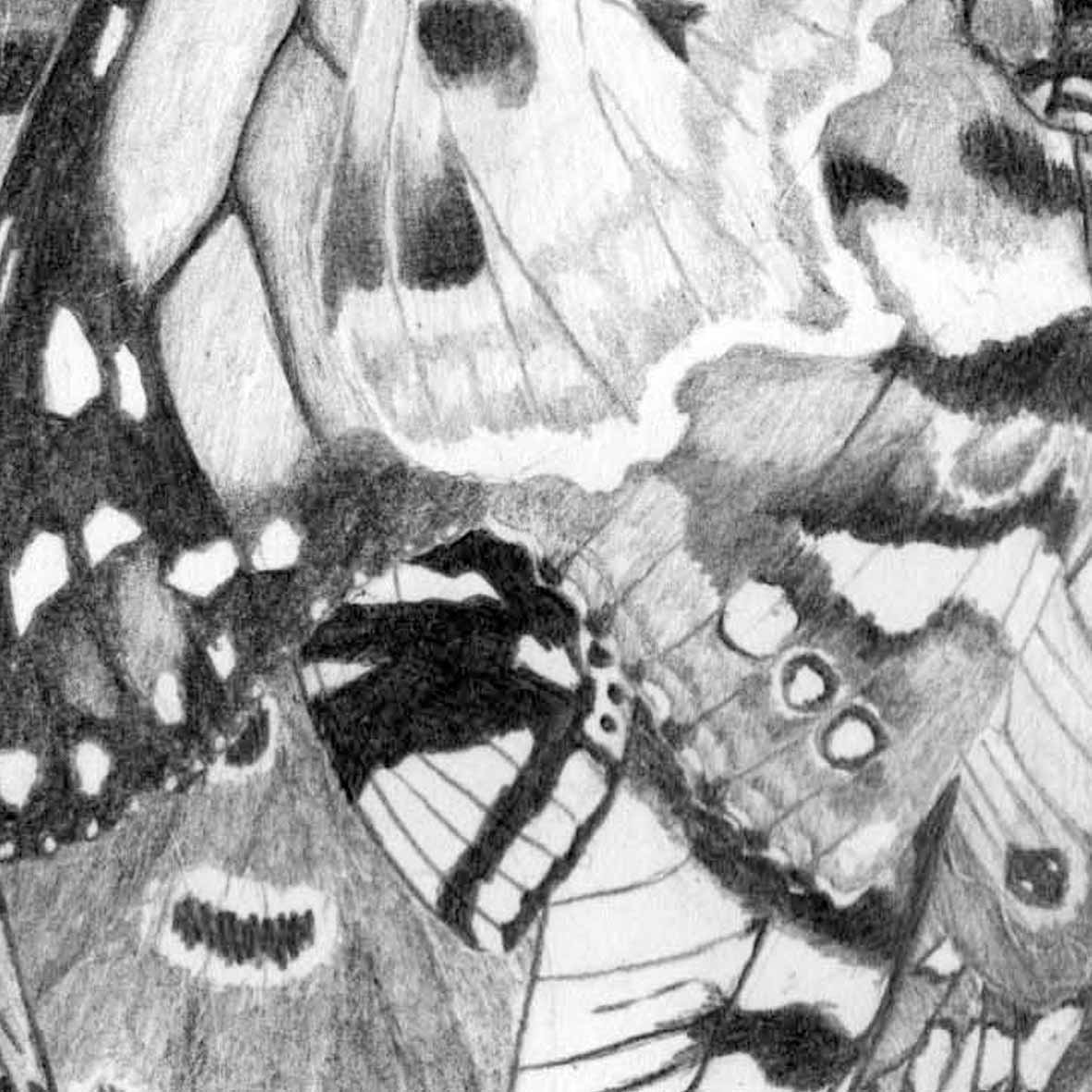 butterfly effect egg.jpg