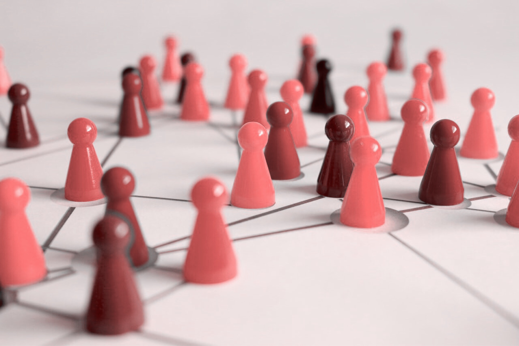 Strategy and operations -