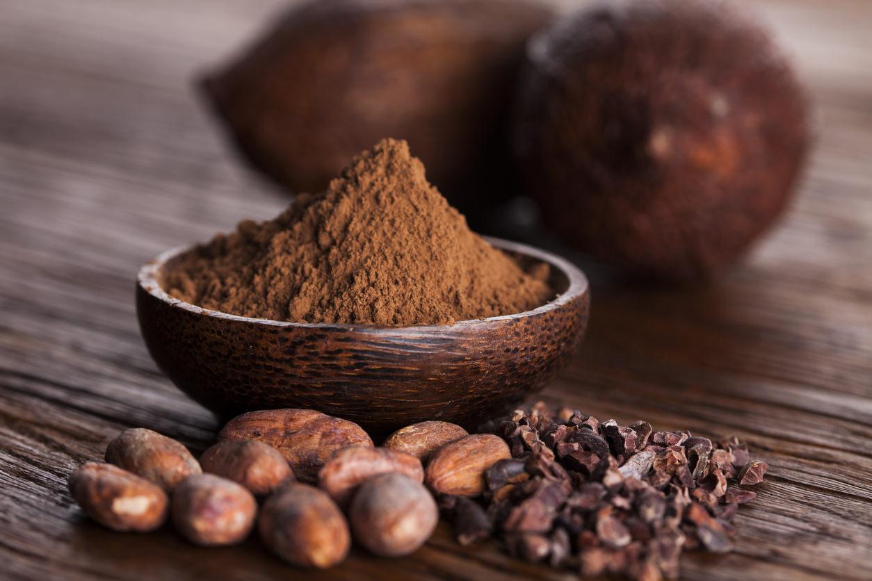 raw cocoa powder and nibs