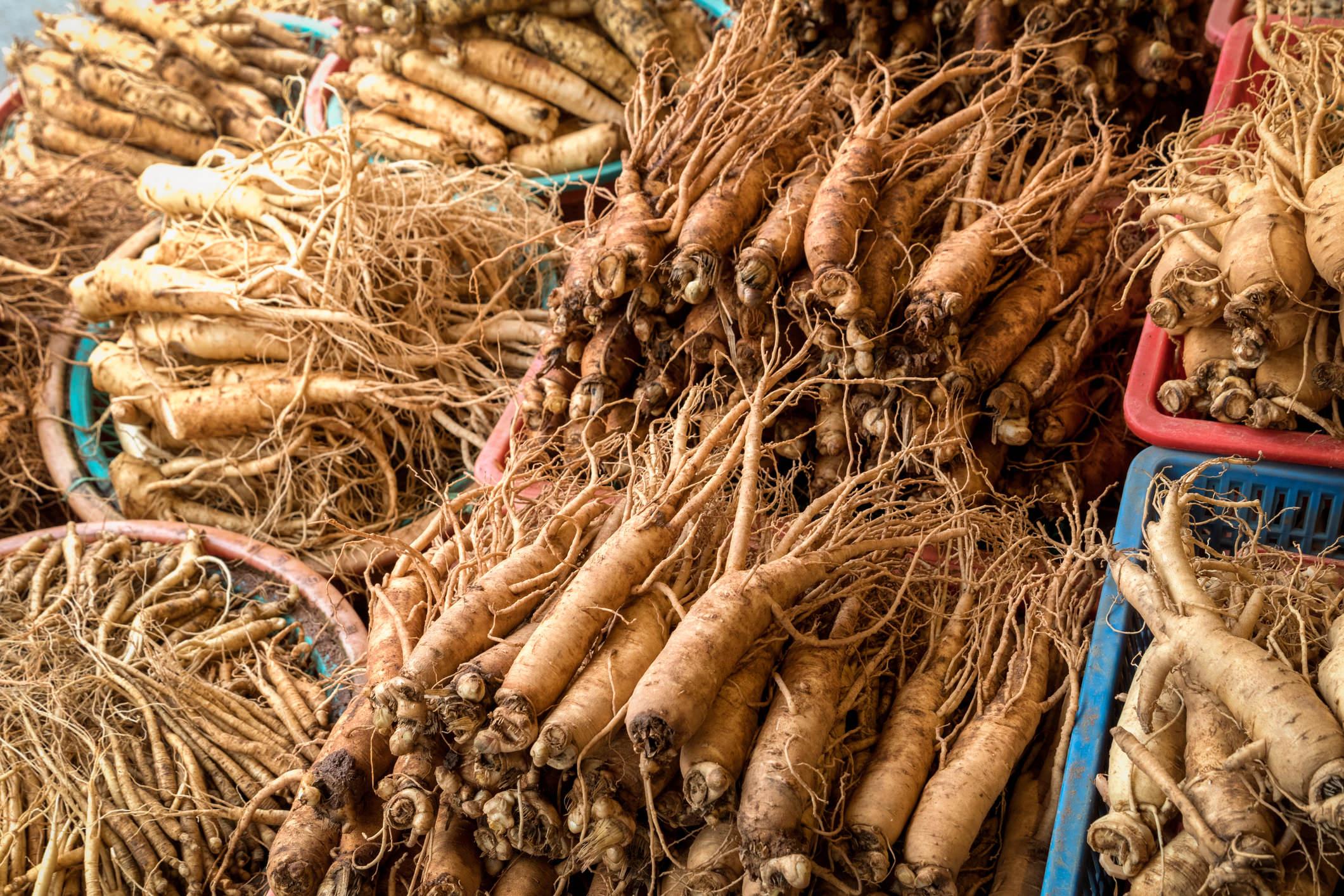 ginseng root bunch farm