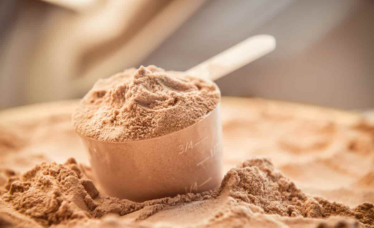 vegan plant chocolate protein powder scoop
