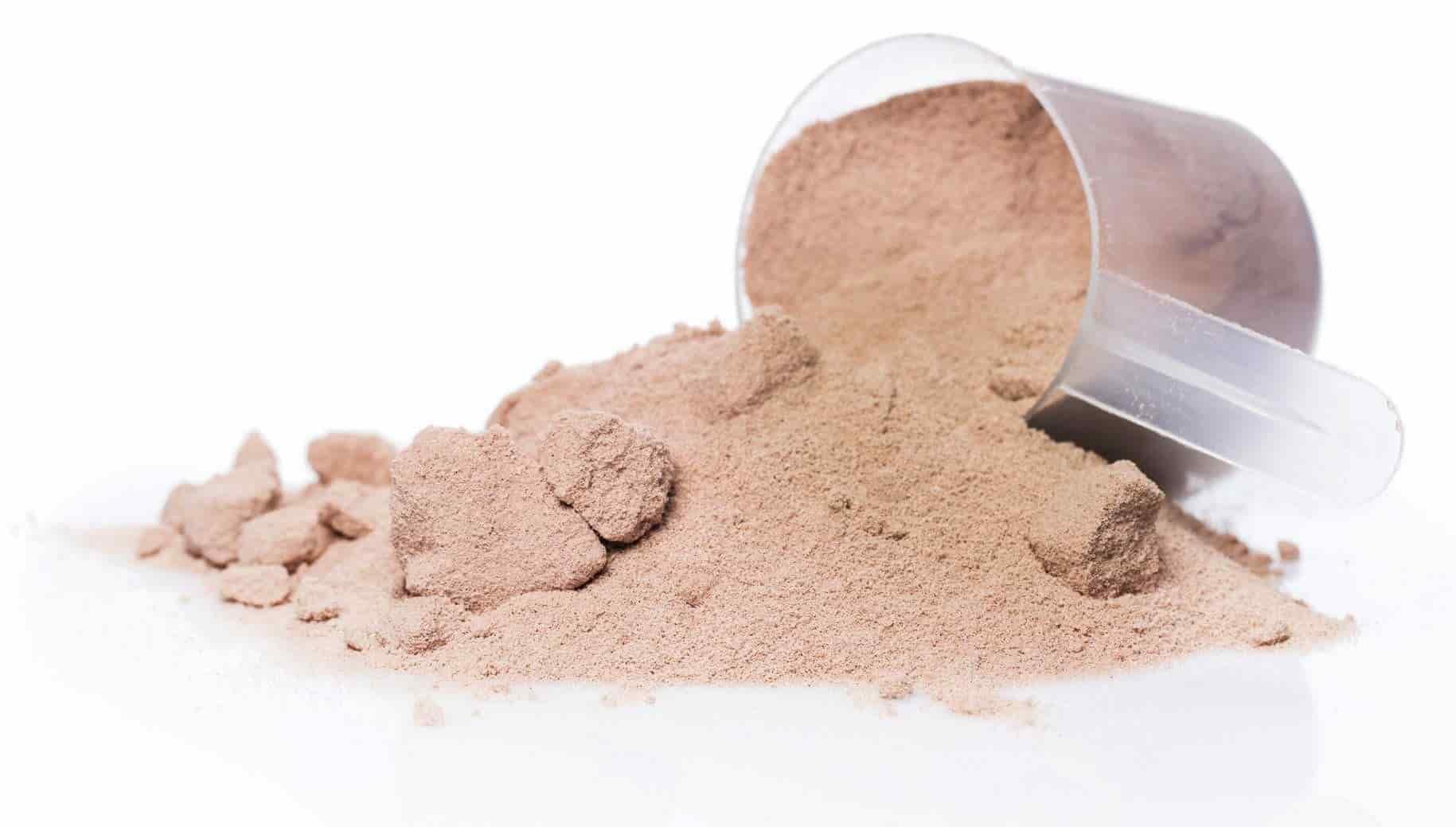 whey protein powder scoop closeup