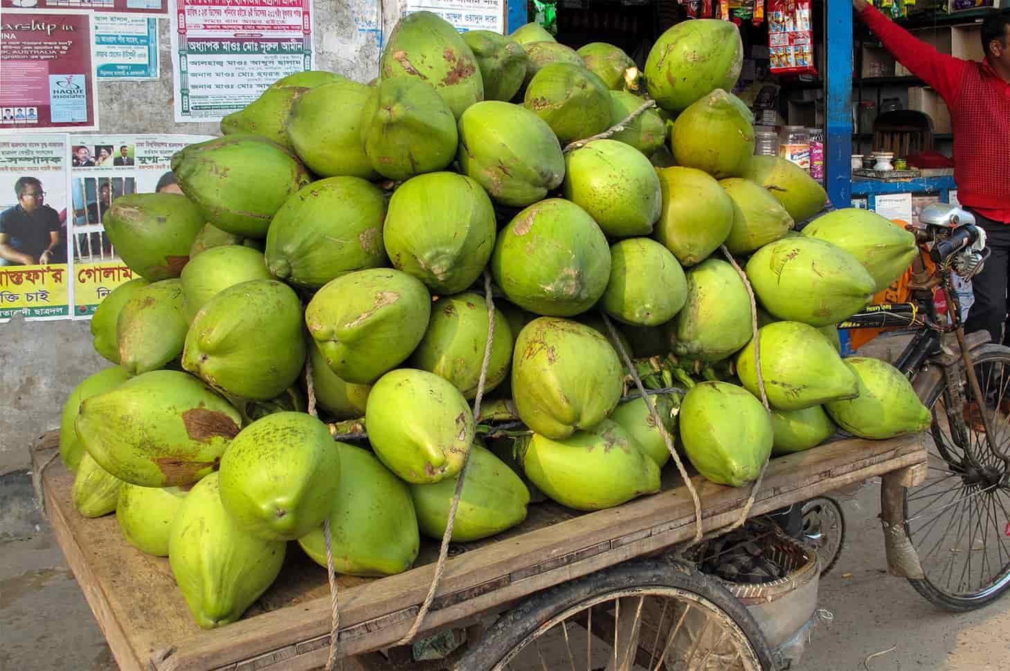 selling coconut husks