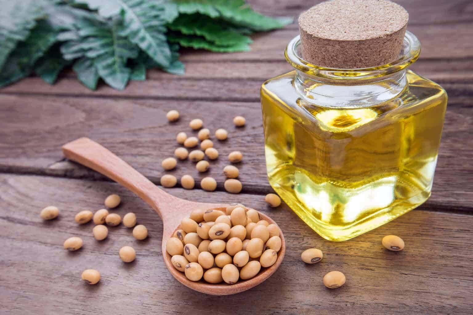 soya-beans and soybean oil on a table