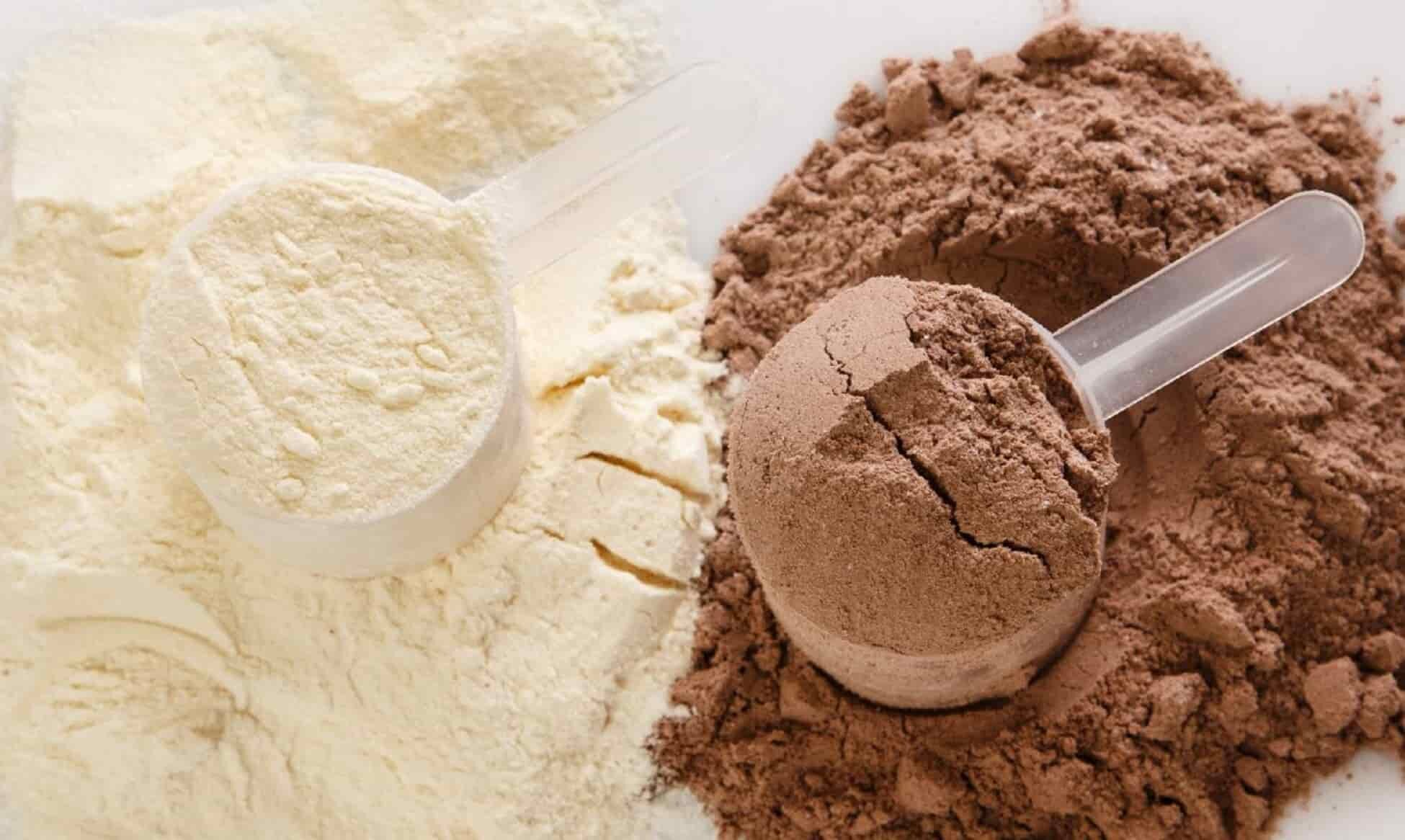 vanilla and chocolate whey protein powder