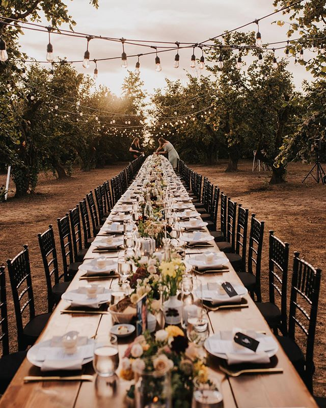 Dream big and empower meaningful connection ✨. The perfect fairytale orchard dinner designed and planned by our team for @lennahealy and @bambamhealy  ________________________________________ Photographer: @bayleedennis  Video: @markbrownfilms  Venue: @the_old_schoolhouse  Rentals: @classicvintagerentals  Caterer/bartender: @whitepepperpdx  Planner/stylist: @oliveandrust.co  Florist: @brierandivy  Hair: @luxhairbymish  Makeup: @makeupbywhit  Musician/DJ: @johnrossmusic  Shaved ice bar: @wailuashaveicepdx  Desserts: @saintcupcakepdx  Dress: @thewhitedresspdx  veil: @annieekstrombridal  ________________________________________ #oregonwedding #intimatedinner #winecountrywedding #visualdesigner #designer #createmagic #outdoordinner #dinnerseries #empowermeaningfulconnection #sidehustle #expander #fallwedding #pacificnorthwestwedding #pacificnorthwest #oregonbrides #heyheyhellomay #wedventure #oregonbridemagazine