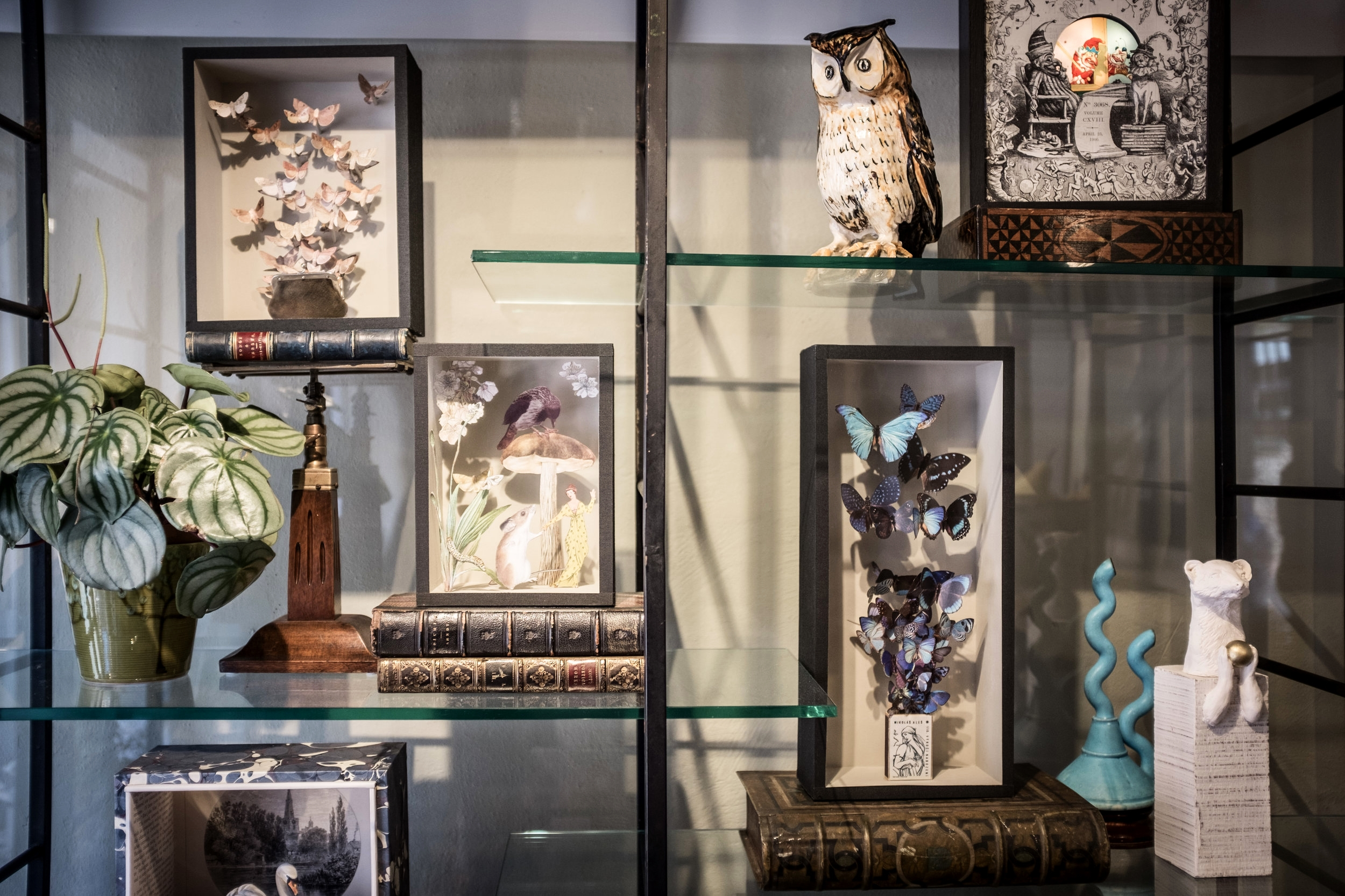 A collection of Nikki Ward boxes ... Moths & Leather Purse, Butterflies & Matchbox and Vignette. Stoat by James Fenner. Punch light box and Swan Lake by Amanda Lawrence Studio. Vintage ceramic owl and abstract pot. All displayed in a vintage (2nd half of 20th C.) glass and metal shelf.