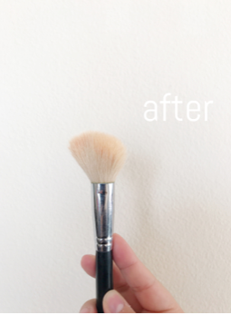 Clean Brush2.png