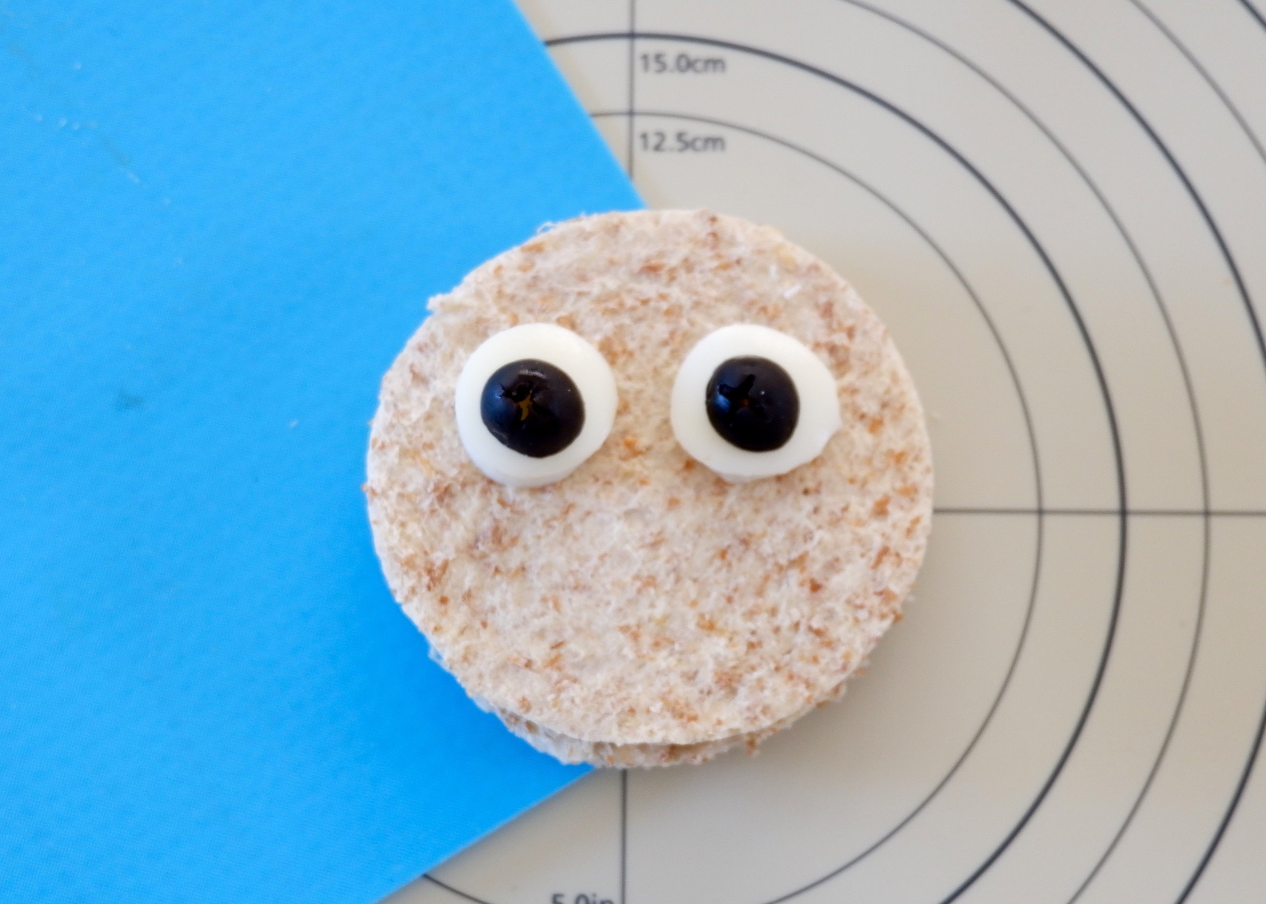 Owl Step 3 - eye balls. jpg.jpg