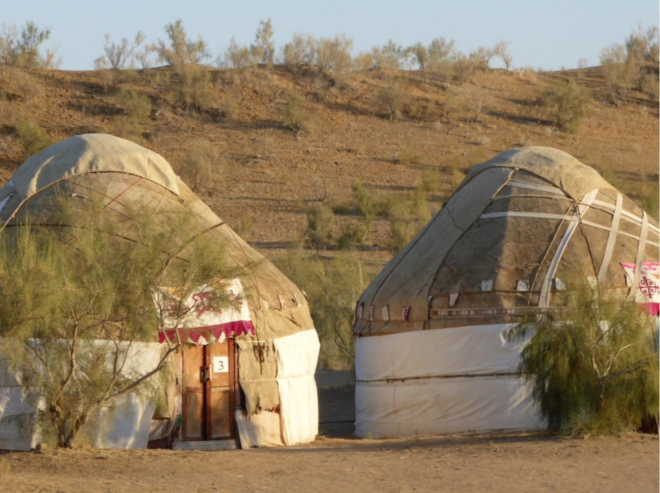 safari_yurt_camp_6.jpg