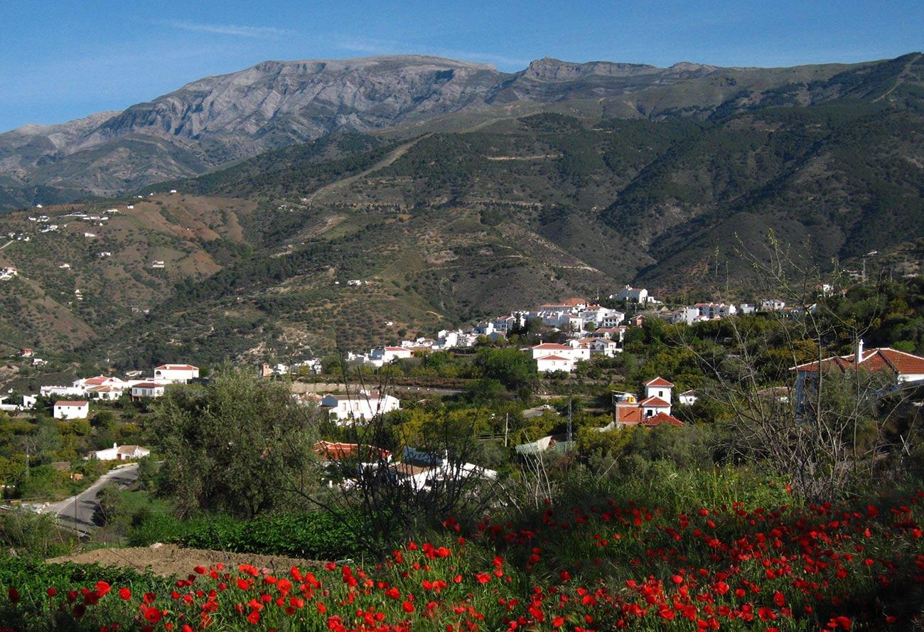 Walking from Cómpeta -