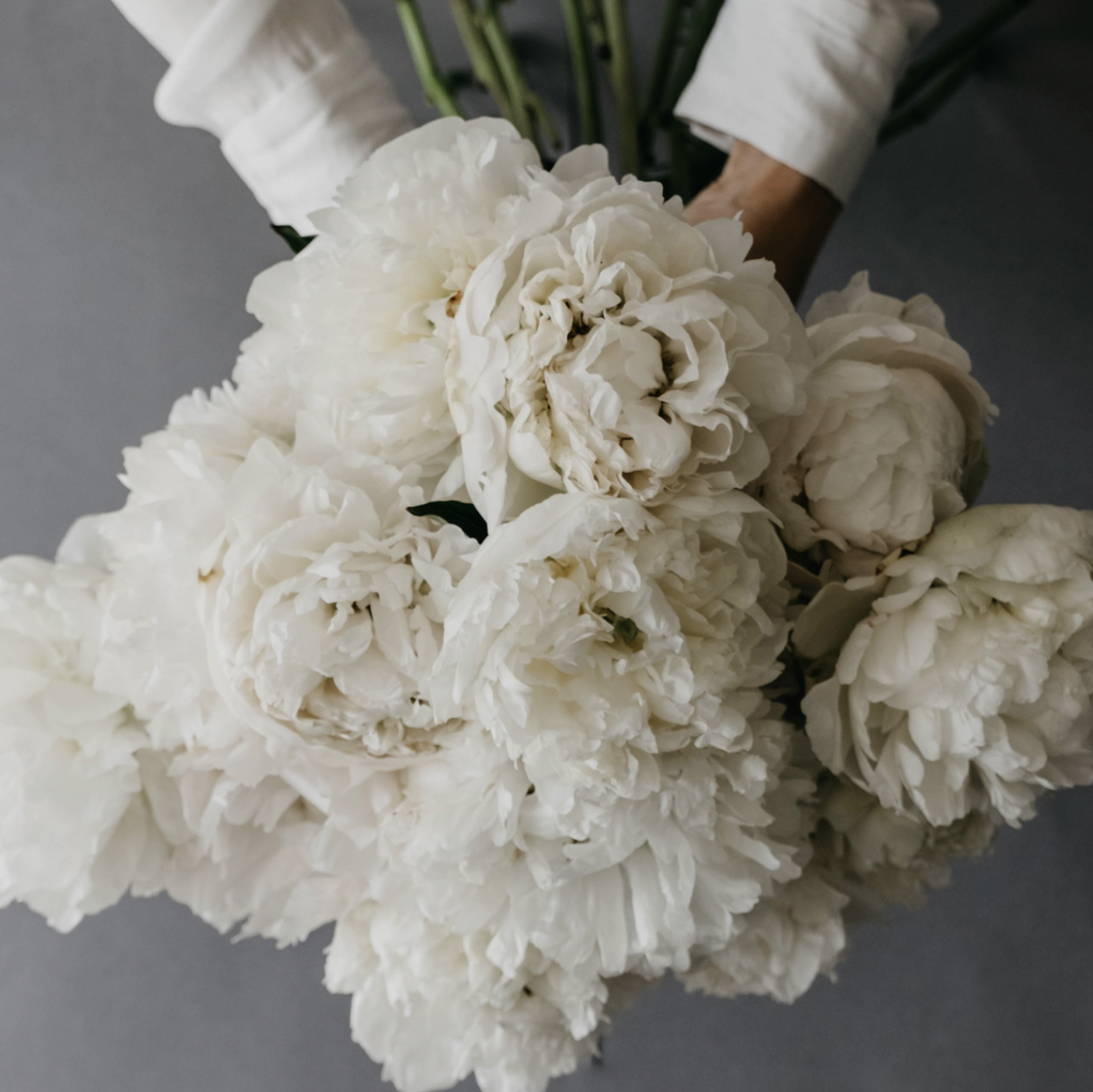 1 Day - Foundation Focus : Business of Floristry