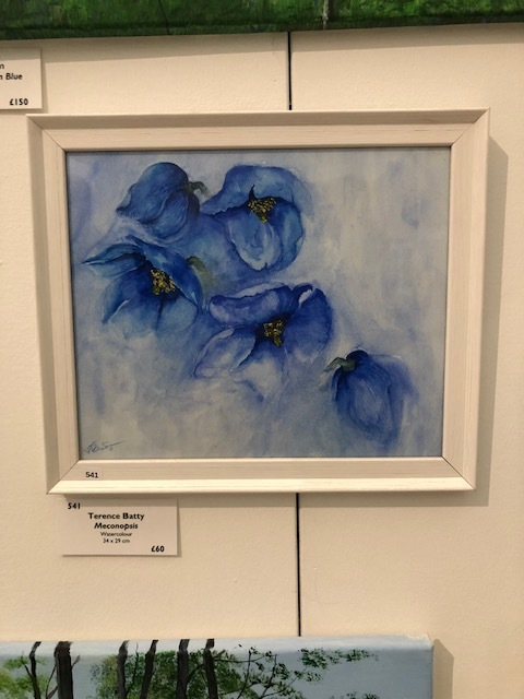 Terry's painting of blue daffodils (meconopsis) exhibited at the Great Sheffield Art Show this year.