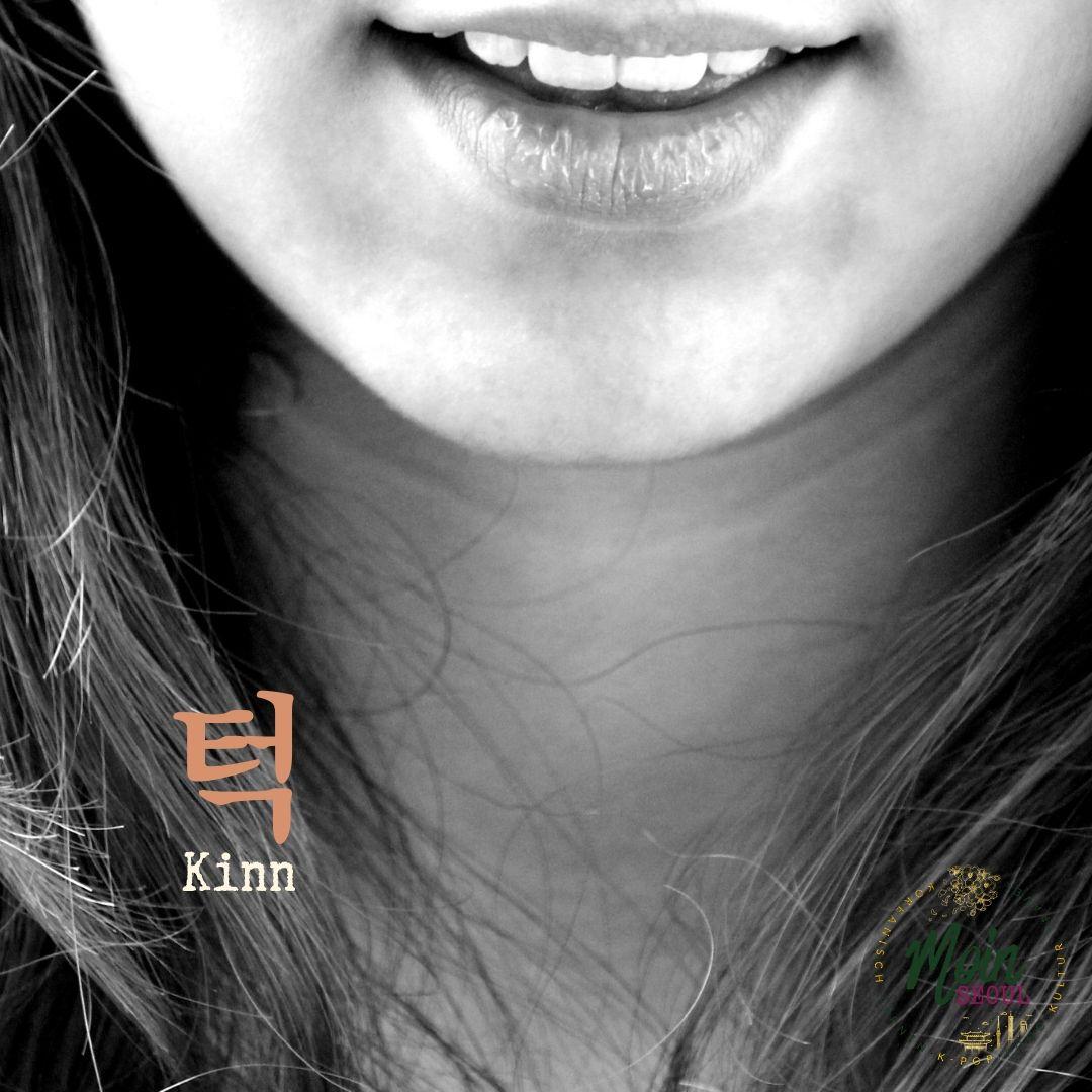 턱_Kinn_einfachkoreanisch_MoinSeoul.jpg