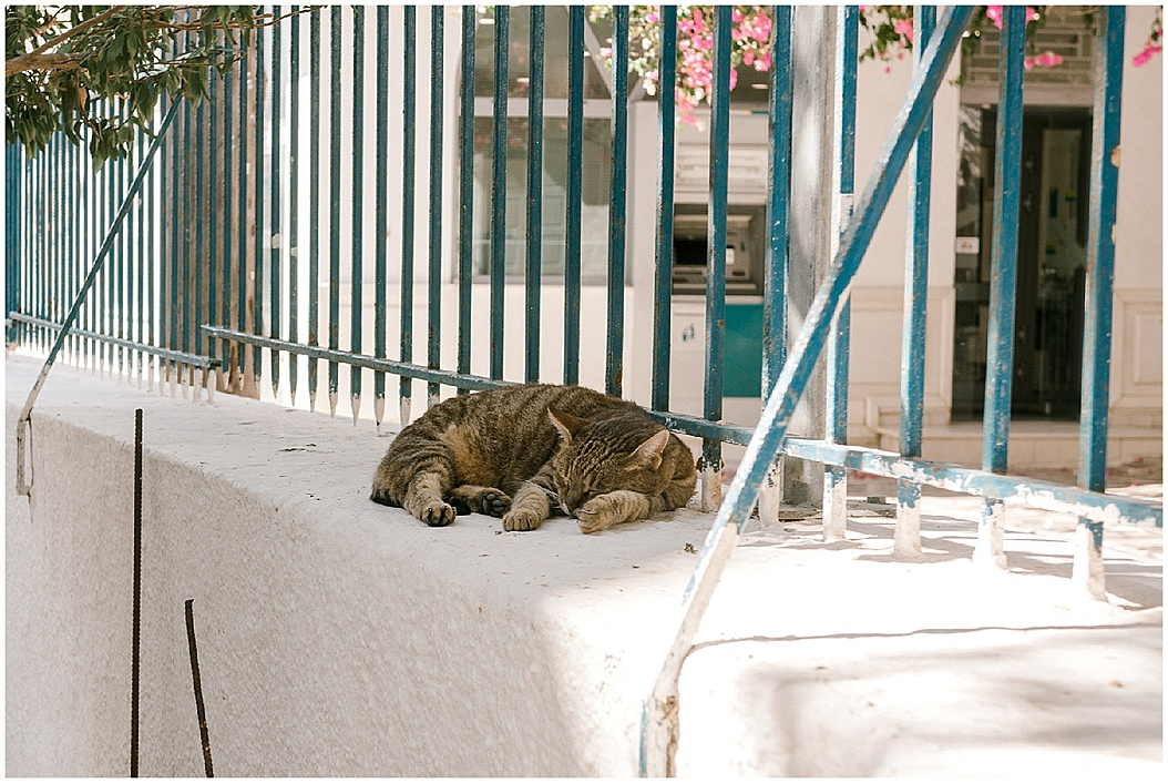 Trip to Greece by Uk Wedding Photographer Lisa Lander_0120.jpg