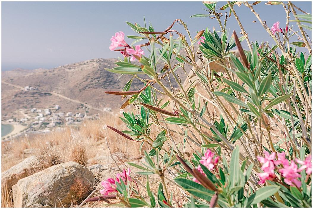 Trip to Greece by Uk Wedding Photographer Lisa Lander_0122.jpg