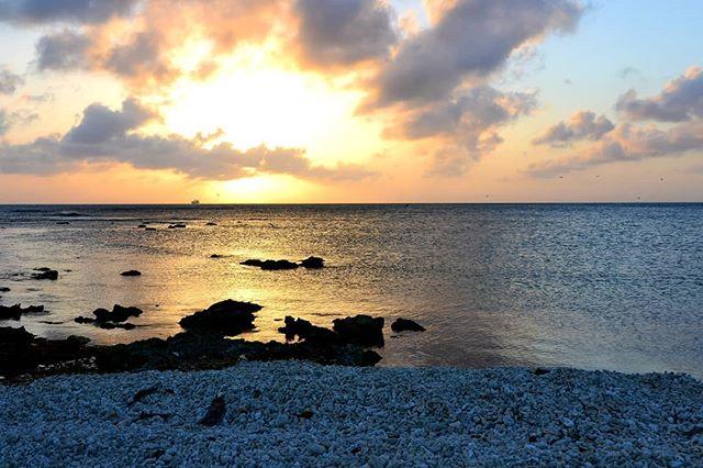 🥂🇦🇼 . . . . . . #aruba #allaruba #visitaruba #travel #inspiration #nature #islandhopping #islandlife #islandliving #outislands #saltlife #island #paradisebeach #tropicalvibes #paradiseisland #saltescape #islandvibes #vitaminsea #ilovetravel #bestvacations #beachsunset #coralbeach #bestsunset #picoftheday