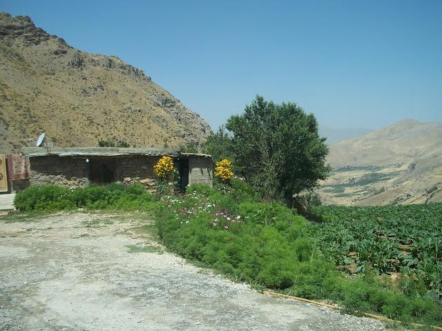 Weze village located near the Iranian border in Iraqi Kurdistan. Photo by: Peggy Gish.