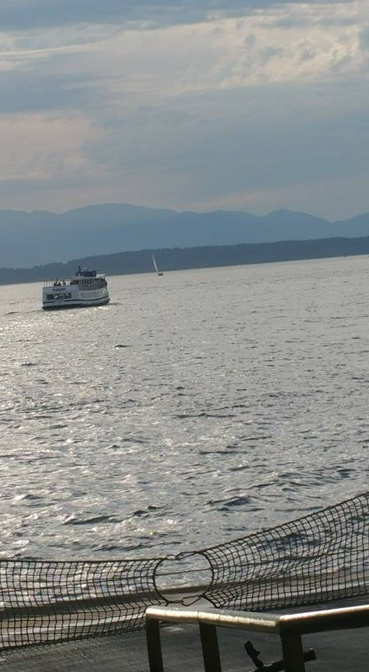 A Puget Sound Ferry and a sailboat share a view of the Olympic Mountain Range in the Pacific Northwest, off of the Pacific Ocean.