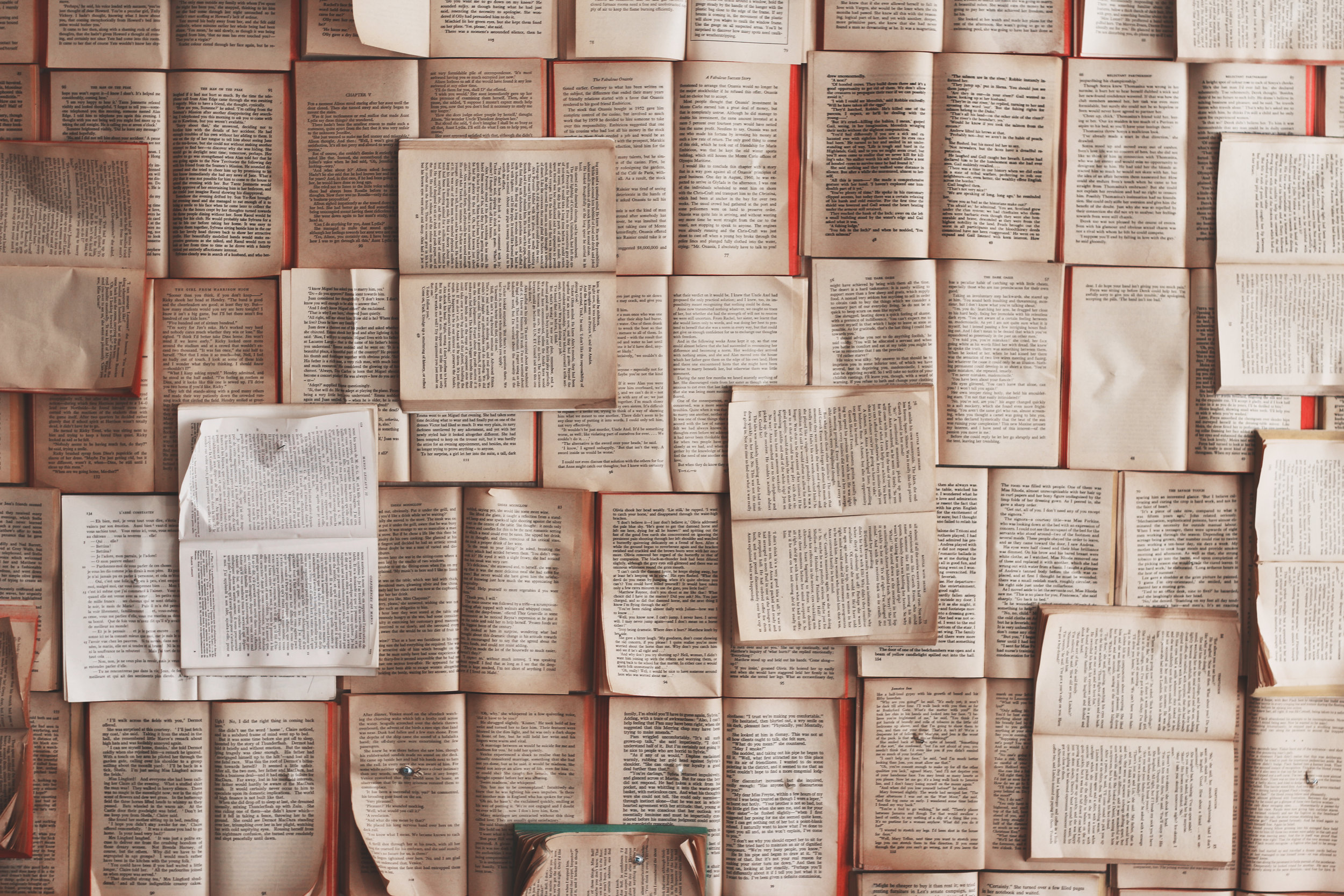 What We Love - Gently Used FictionGently Used Non-FictionGently Used Children's BooksGently Used Classics and Vintage TitlesGently Used Books Published Within the Last Ten Years