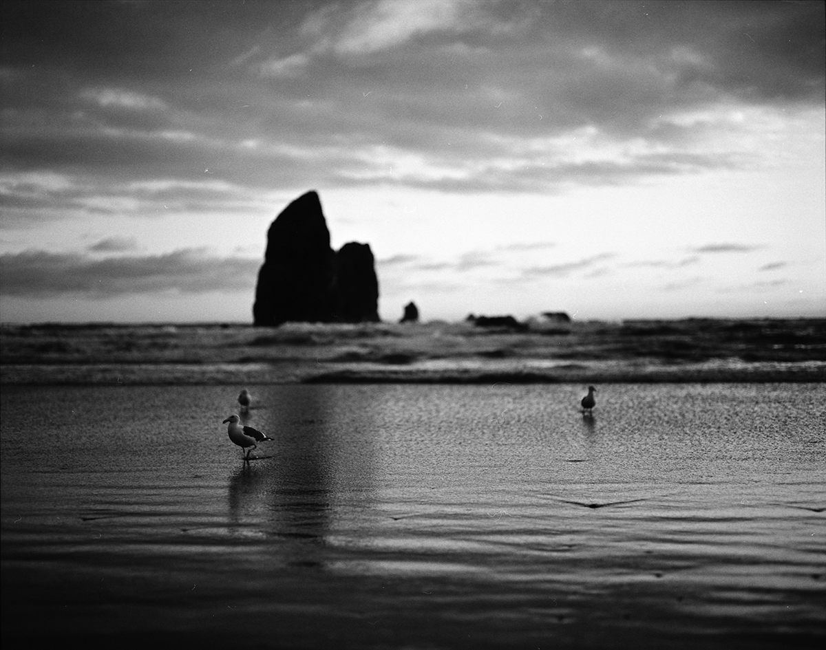CannonBeach_IMG_0013-smalll.jpg