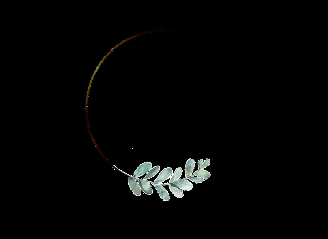 DR. Zen Logo - Transparent.png