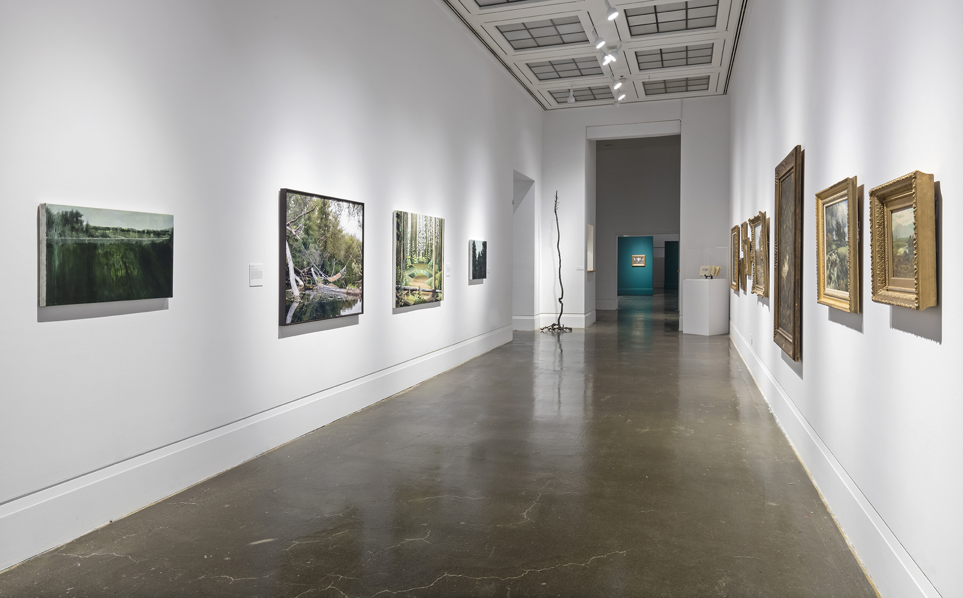 Beyond the Pines, Robert Freeman Gallery, Art Gallery of Mississauga. Photo by Toni Hafkenscheid.