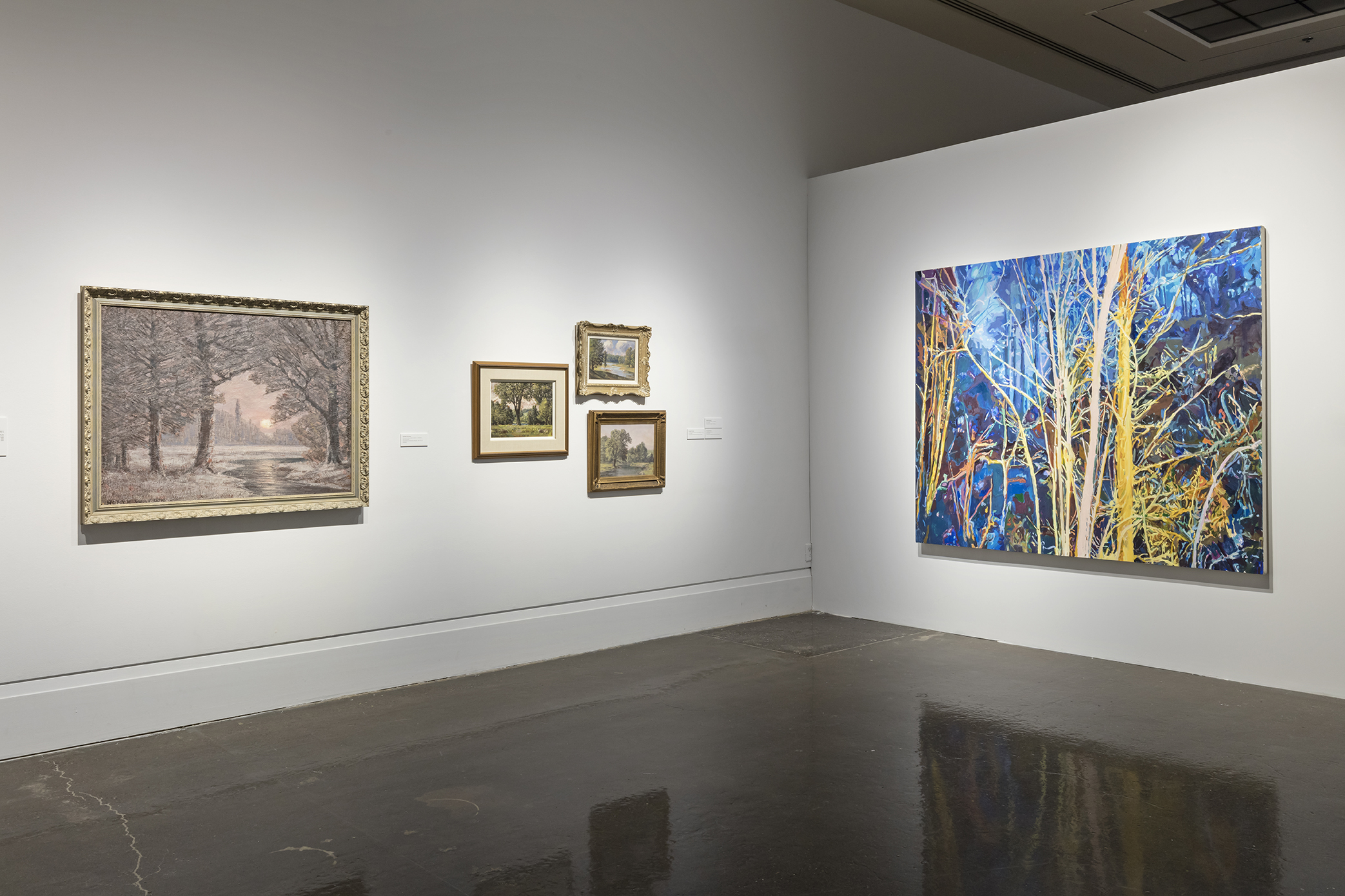 Beyond the Pines, Main Gallery, Art Gallery of Mississauga. Photo by Toni Hafkenscheid.