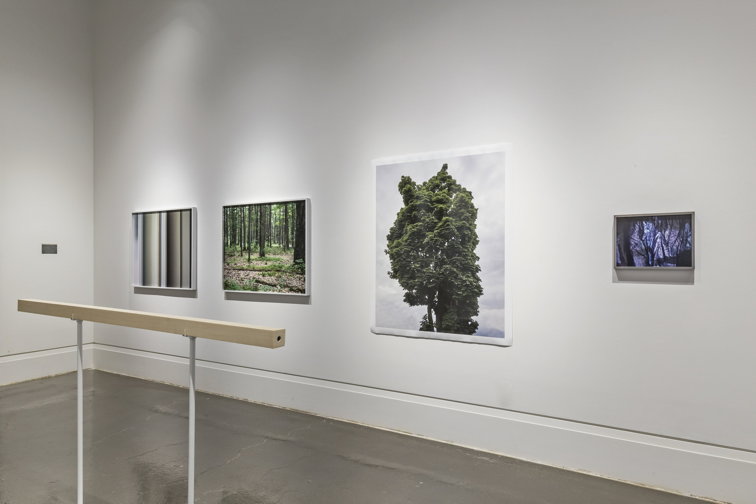 Chih-Chien Wang, A Person Who Disappears , Robert Freeman Gallery, Art Gallery of Mississauga. Photo by Toni Hafkenscheid.