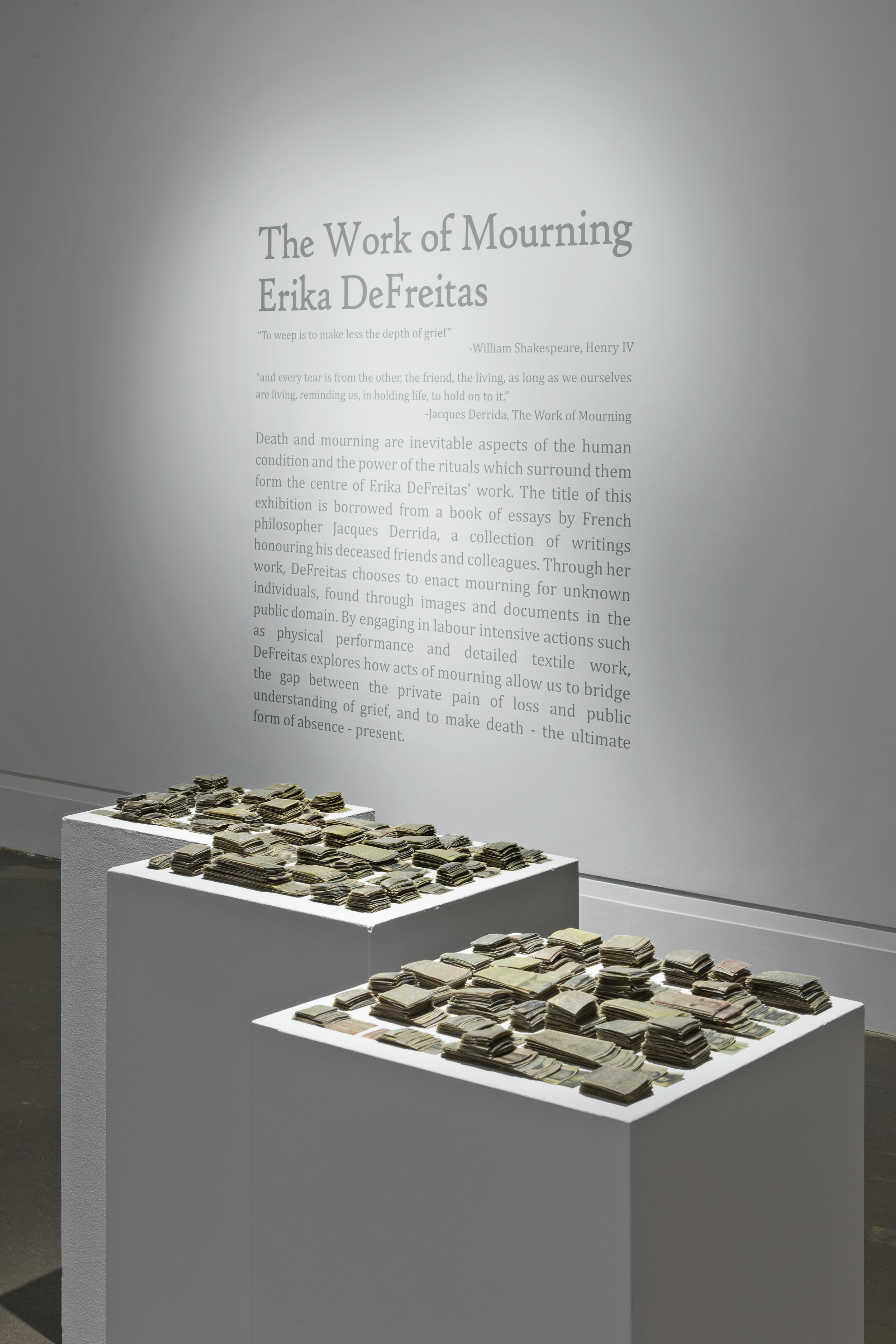 Erika DeFreitas, The Work of Mourning, 2015, Main Gallery, Art Gallery of Mississauga. Photo by Toni Hafkenscheid.