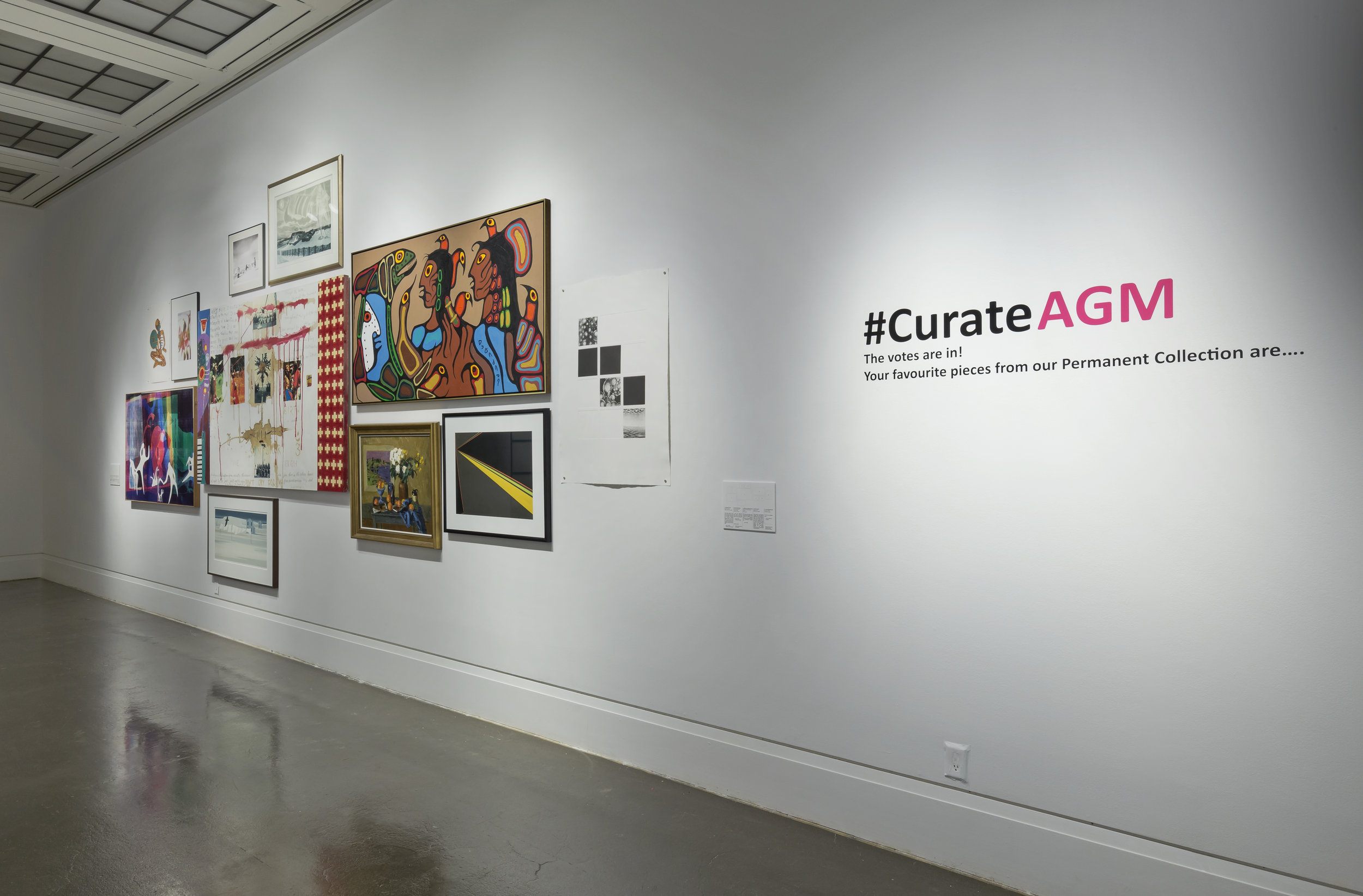 #CurateAGM, Robert Freeman Gallery, Art Gallery of Mississauga. Photo by Toni Hafkenscheid.