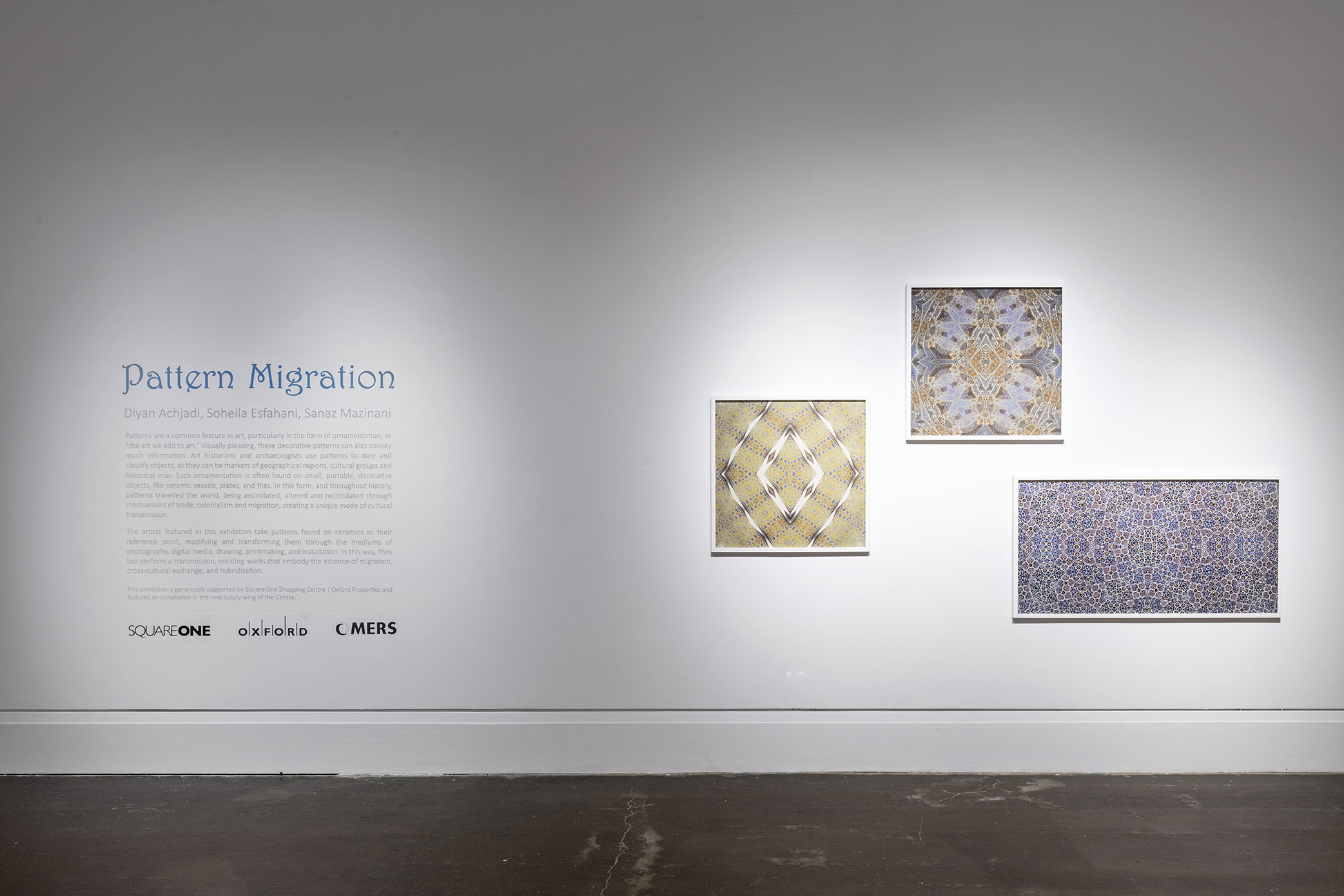 Pattern Migration . Main Gallery, Art Gallery of Mississauga. Photo by Toni Hafkensheid.