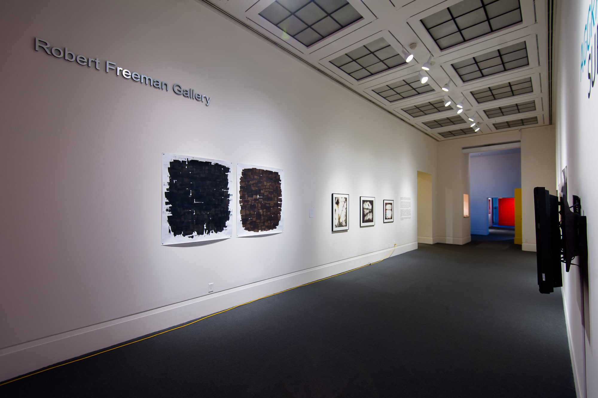 Aggravated Surfaces , Robert Freeman Gallery, Art Gallery of Mississauga. Photo by Janick Laurent.