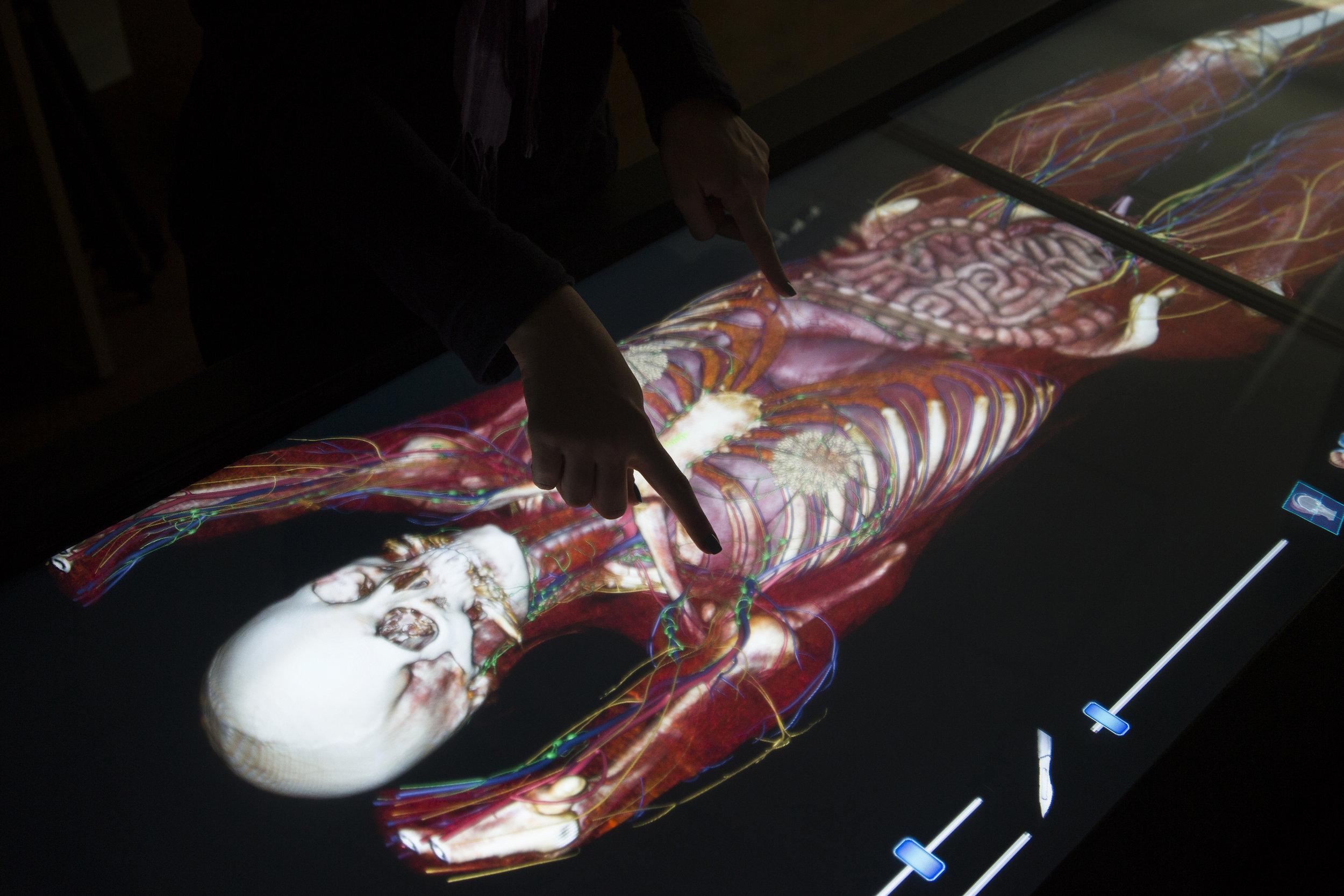 Anatomia Patológica - Destinado a médicos brasileiros e estrangeiros, este curso tem duração de três anos.