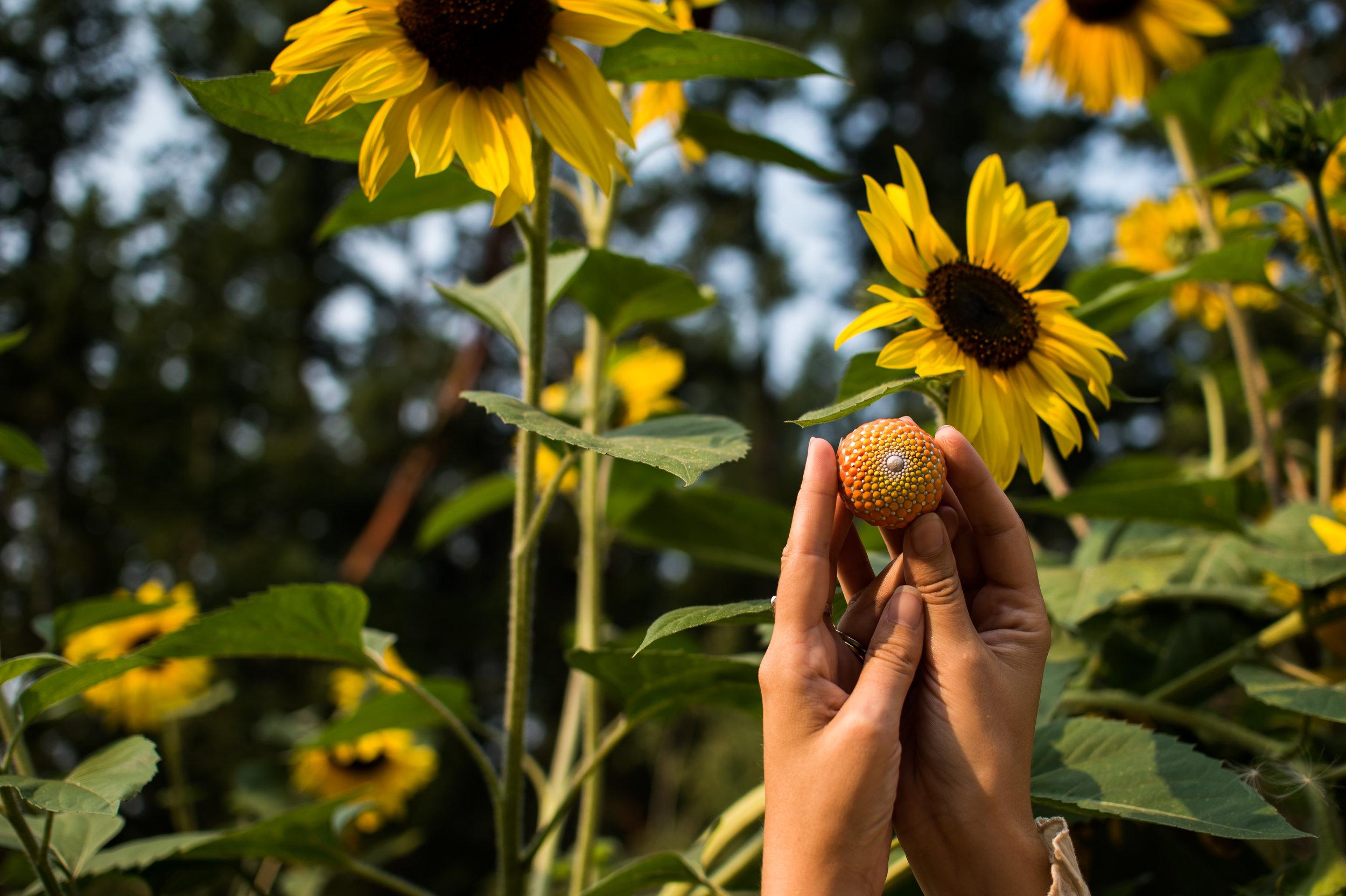 Sunflower   Elspeth McLean   Artistry