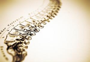 oc-chiropractor.jpg