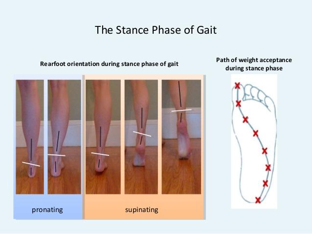 pudendal-neuralgia-and-lower-extremity-feet-biomechanics-ics-2011-glasgow-scotland-19-638[1].jpg
