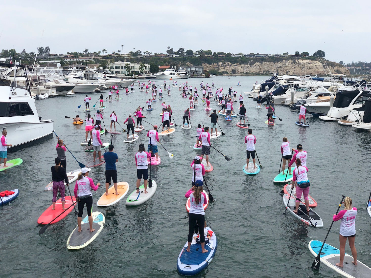 Standup-for-the-Cure-paddleboarders.jpg