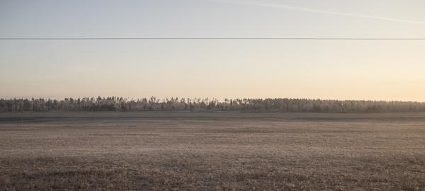 ..der alltägliche Blick aus dem vereisten Zugfenster