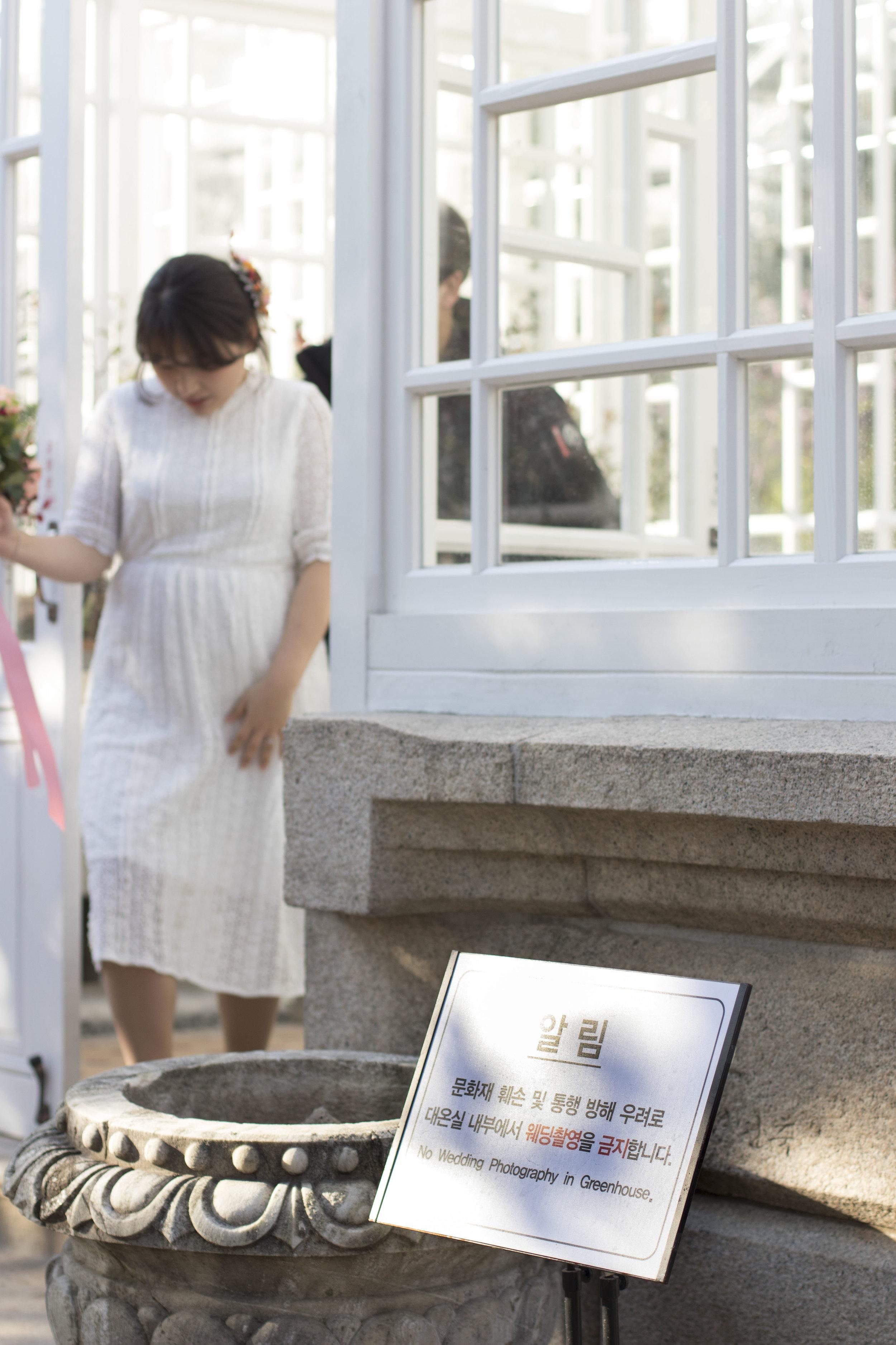 Seoul Palast Hochzeitsfoto.jpg