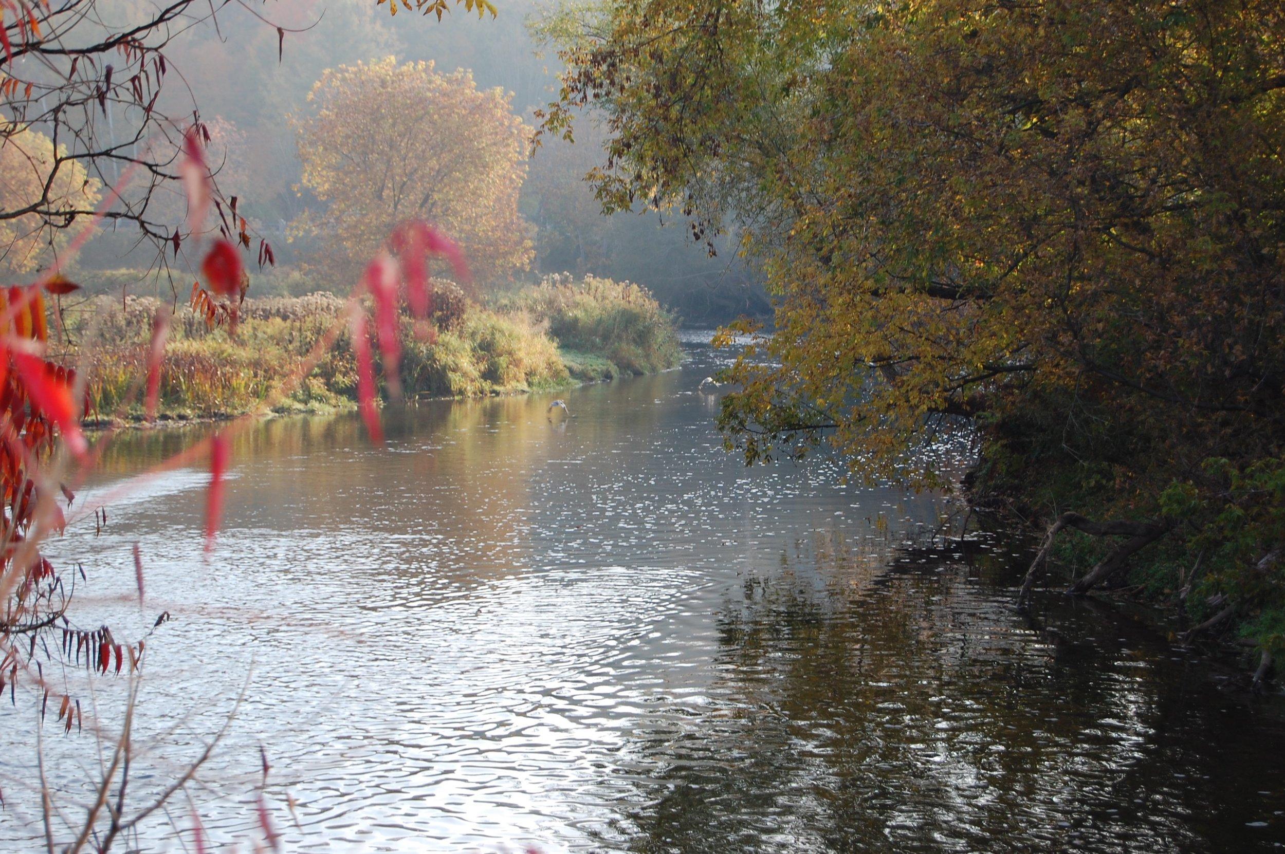 River in Fall.jpg