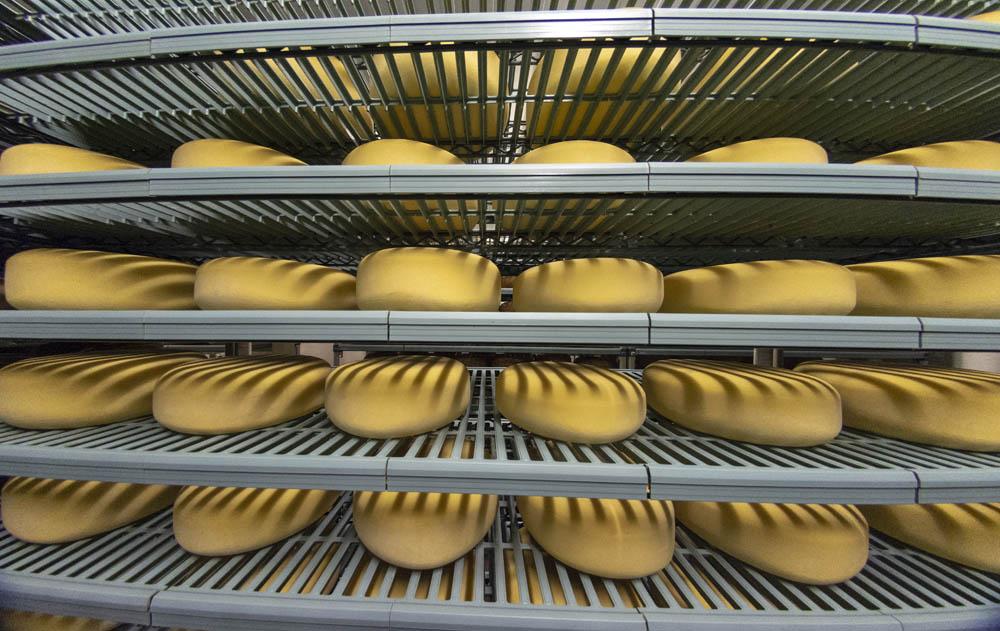Schoch Cheese 2.jpg