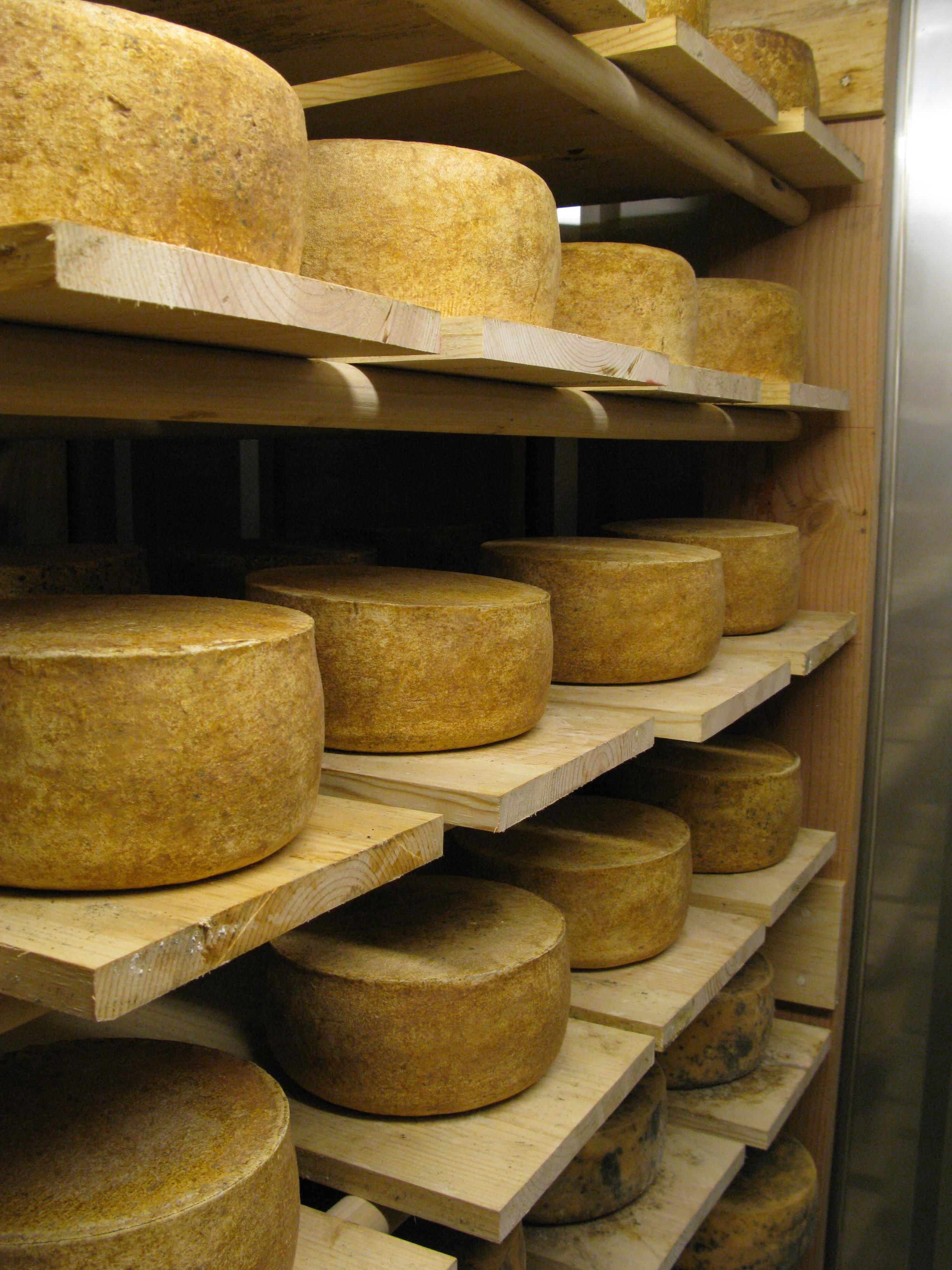 Schoch Cheese 1.jpg