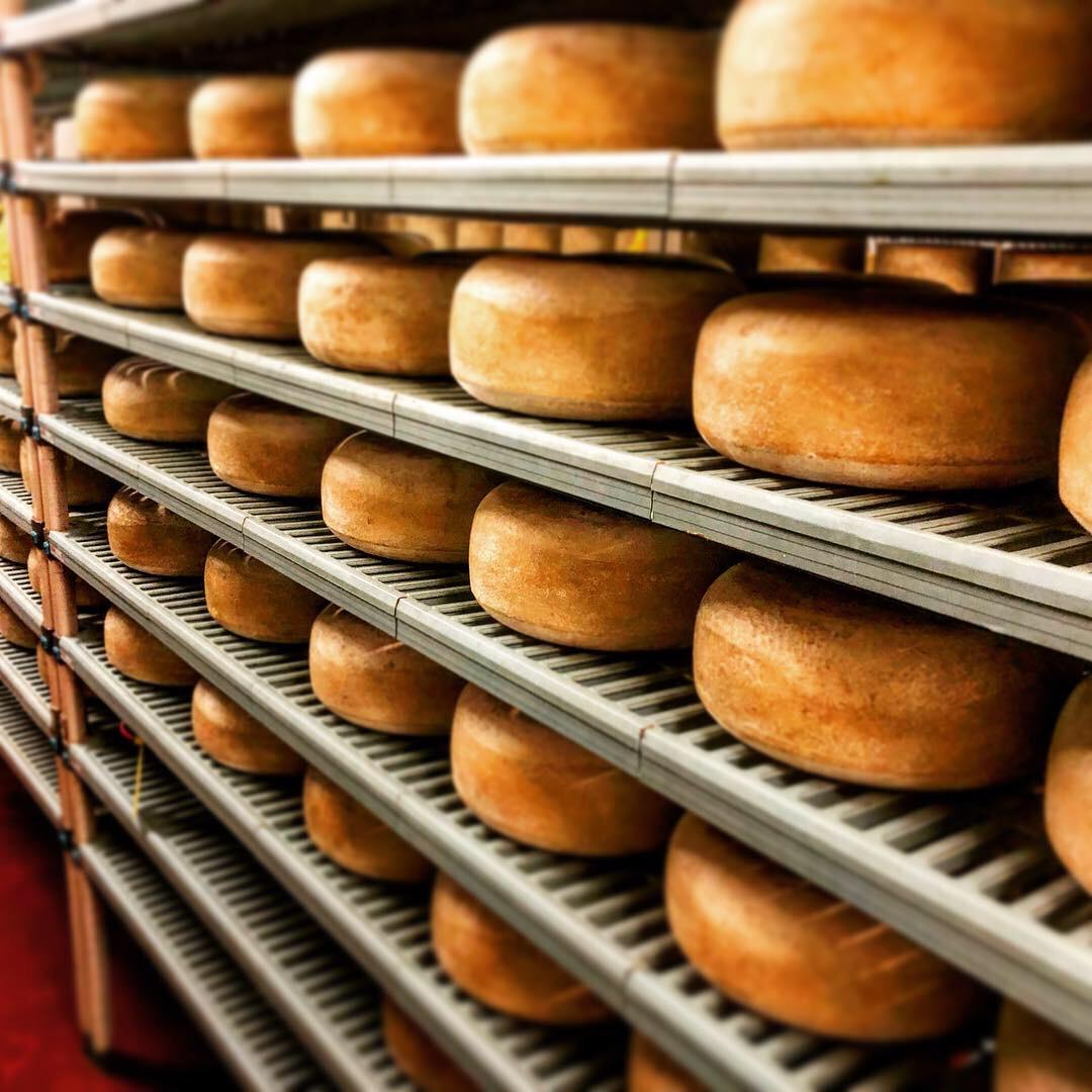 Schoch Cheese 4.JPG