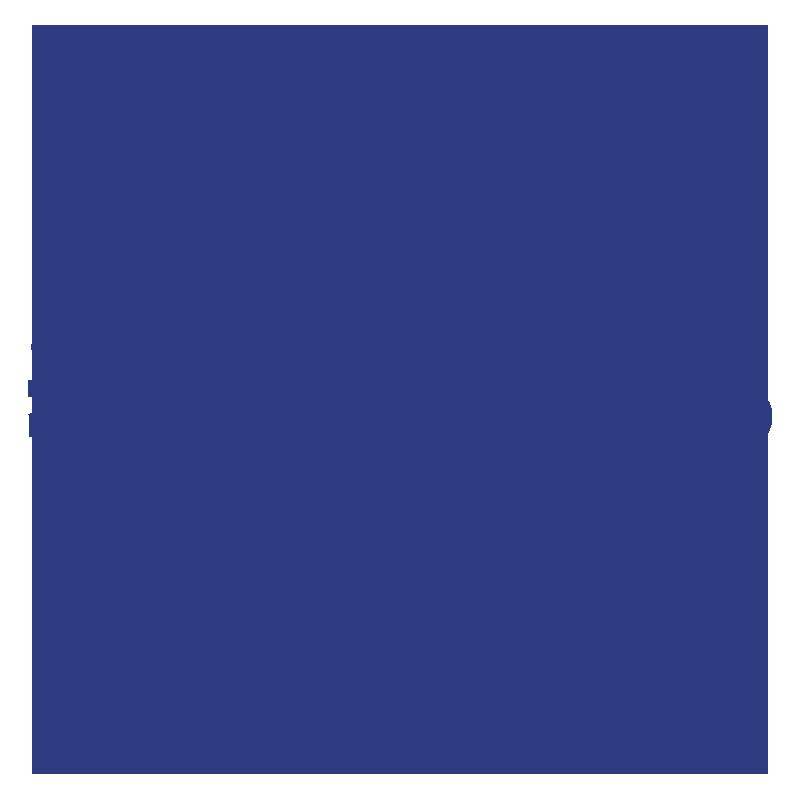 Newport Folk Festivals Foundation.png