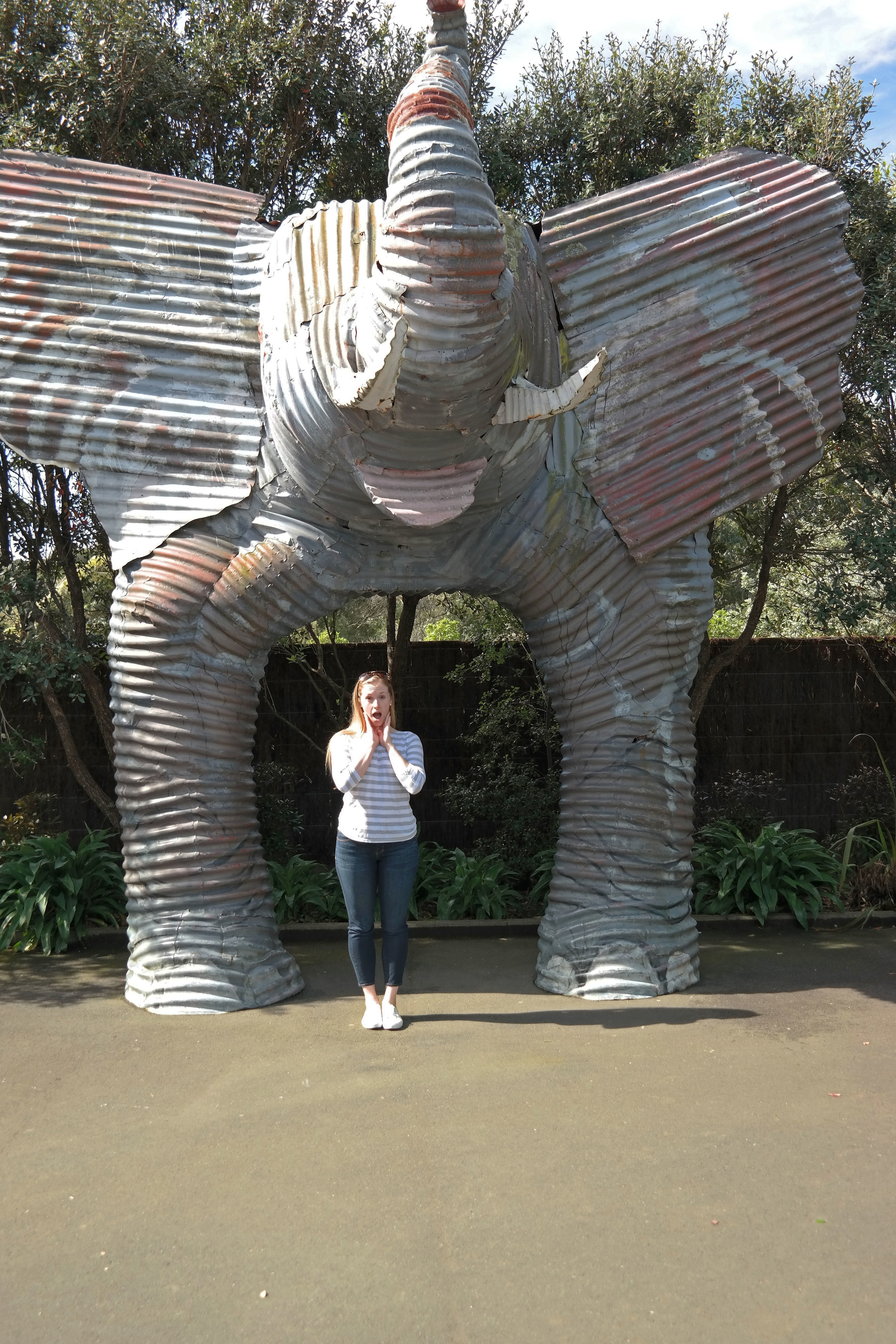 Auckland Zoo   lovely letters