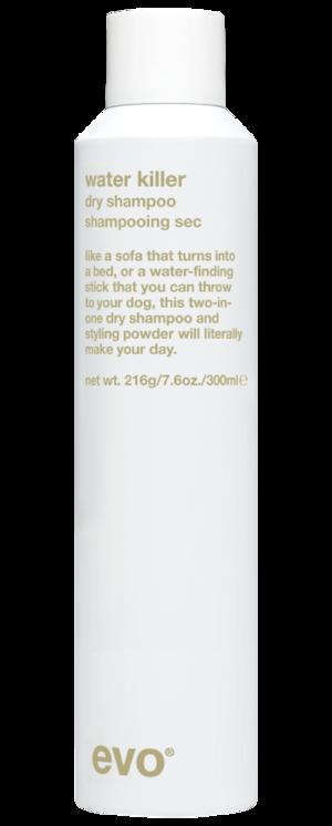 Evo Hair Dry Shampoo